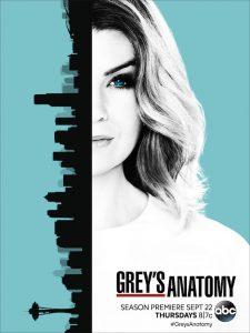 Grey's Anatomy – Saison 13 (Vostfr)